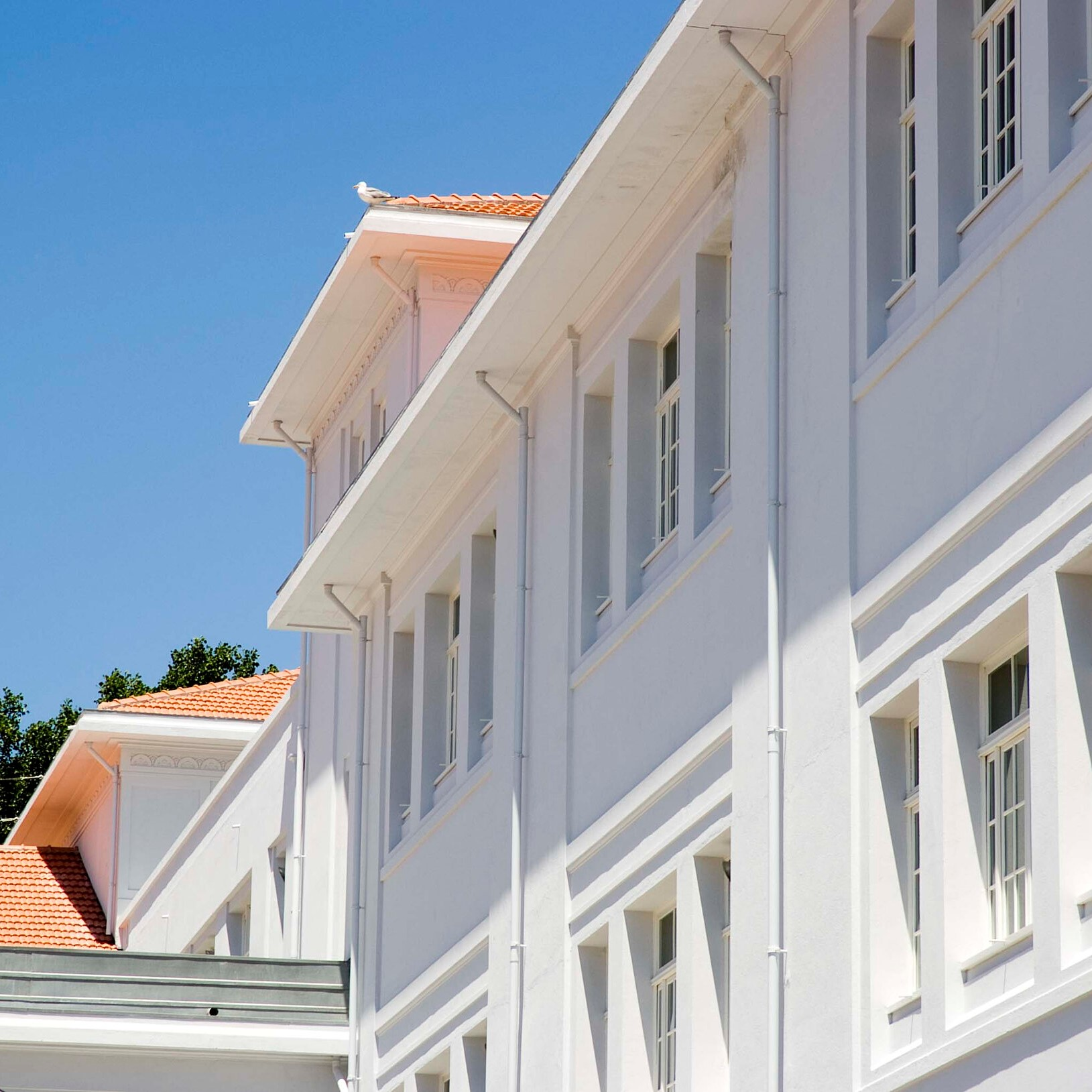 Escola Secundária Rodrigues de Freitas, Porto